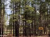 3795 Mogollon Vista Drive - Photo 5