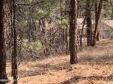 3795 Mogollon Vista Drive - Photo 8