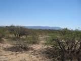 5651 Natoma Trail - Photo 1