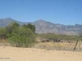 5651 Natoma Trail - Photo 2