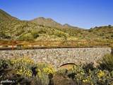 16020 Ringtail Trail - Photo 1