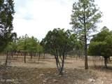 4783 Horseshoe Dr Drive - Photo 1