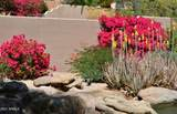 12184 Poinsettia Drive - Photo 5