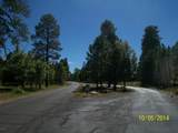 3891 Timberline Drive - Photo 11