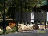 3891 Timberline Drive - Photo 12