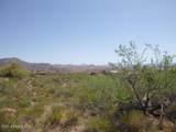 11651 Yucca Lane - Photo 16