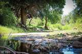 12260 Countryside Circle - Photo 9