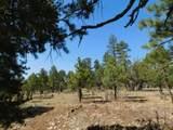 3796 Durango Drive - Photo 12