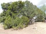 3403 Buckhorn Bend - Photo 20