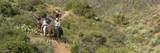 42004 Chiricahua Pass Pass - Photo 19