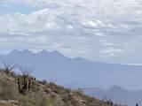 14522 Desert Tortoise Trail - Photo 3