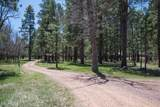 00000 Forest Road 135 - Photo 4