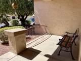17233 Goldwater Drive - Photo 37