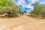 42043 Spur Cross Road - Photo 43