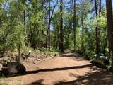 357 Columbine Road - Photo 4