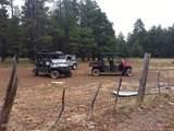 17195 Deer Run Road - Photo 23