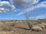 128 Acres Franconia Road - Photo 7