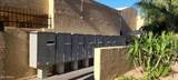 3131 Cochise Drive - Photo 32