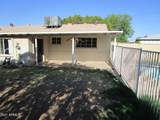 3036 Aster Drive - Photo 23