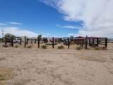 3178 Saguaro Road - Photo 42