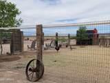 3178 Saguaro Road - Photo 44