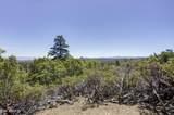 5815 Rustic Trail - Photo 45