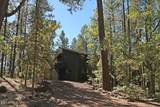 3057 Red Robin Road - Photo 49