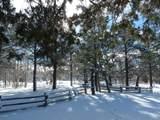 9957 Porter Mountain Road - Photo 5