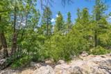 1140 Cactus Wren Circle - Photo 12