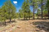 1140 Cactus Wren Circle - Photo 6