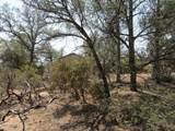 402 Deer Trail - Photo 2