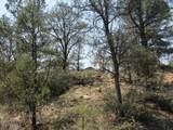 402 Deer Trail - Photo 4