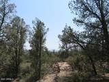 402 Deer Trail - Photo 6