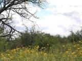 tbd Old Javelina Trail - Photo 5