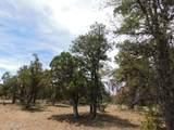 8202 Mogollon Trail - Photo 10