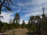 8202 Mogollon Trail - Photo 11