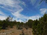 8202 Mogollon Trail - Photo 12