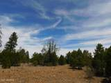 8202 Mogollon Trail - Photo 13