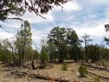 8202 Mogollon Trail - Photo 2