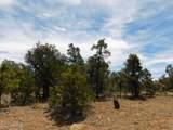 8202 Mogollon Trail - Photo 3