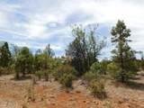 8202 Mogollon Trail - Photo 5
