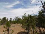 8202 Mogollon Trail - Photo 6