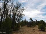 8202 Mogollon Trail - Photo 7