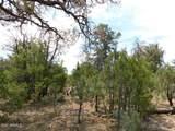 8202 Mogollon Trail - Photo 8