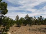 8202 Mogollon Trail - Photo 9