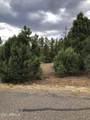 6473 Mogollon Trail - Photo 13