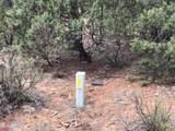 6473 Mogollon Trail - Photo 15
