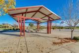 22456 Via Del Verde Drive - Photo 49