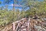 1328 Sierry Peaks Drive - Photo 60