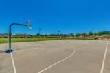 6631 Balboa Drive - Photo 51